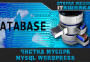 Чистка базы данных MySQL на wordpress