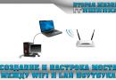 Создание и настрока моста между wifi и Lan ноутбука
