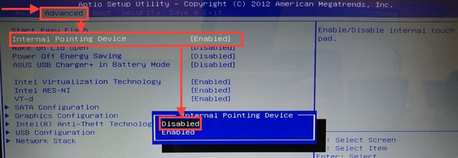 Internal Pointing Device, где Enabled – это включено, Disabled – отключено